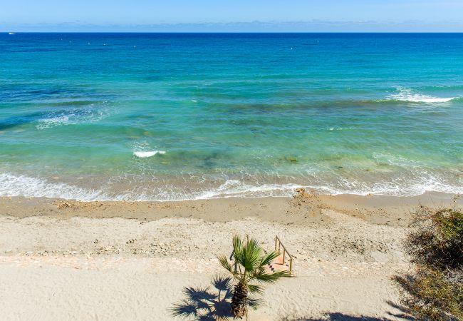 Ferienwohnung Yulia (2146305), Torrevieja, Costa Blanca, Valencia, Spanien, Bild 43