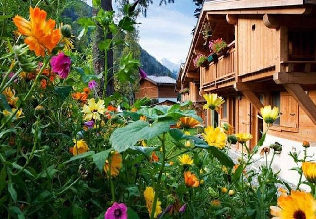 Ferienhaus Chalet Skis aux pieds à Chamonix-Argentière (2195156), Chamonix Mont Blanc, Hochsavoyen, Rhône-Alpen, Frankreich, Bild 2
