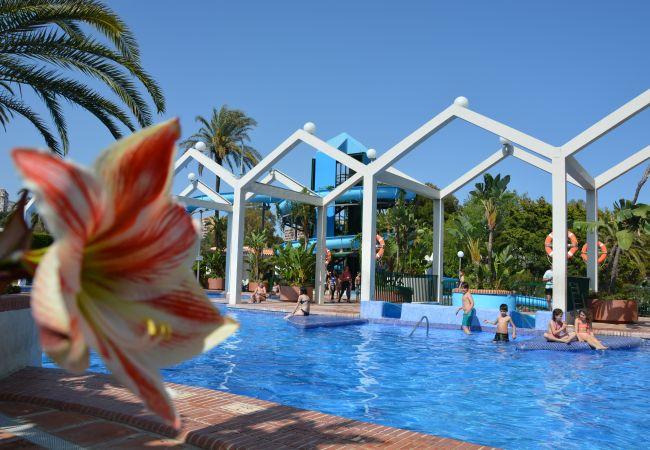 Ferienwohnung Cubo's Apartamento 1001 Benal Beach (2334721), Fuengirola, Costa del Sol, Andalusien, Spanien, Bild 42