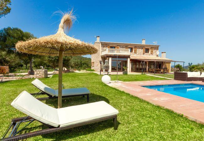 Holiday house Villa Mestre (2232214), Sa Pobla, Majorca, Balearic Islands, Spain, picture 1