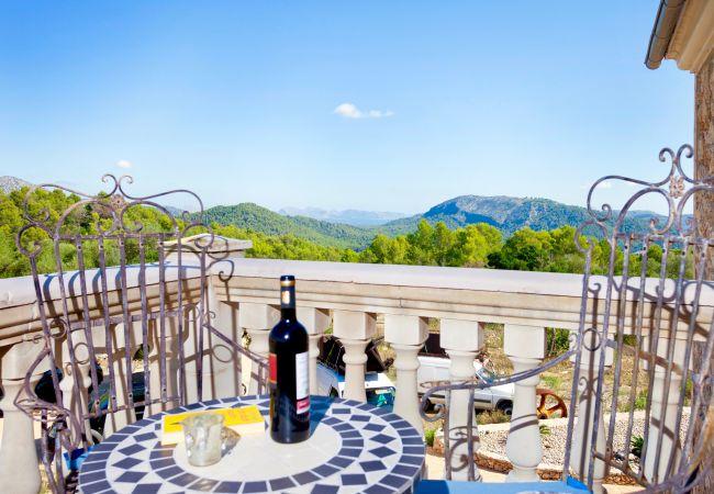 Holiday house Villa Mestre (2232214), Sa Pobla, Majorca, Balearic Islands, Spain, picture 4