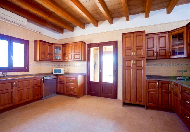 Holiday house Villa Mestre (2232214), Sa Pobla, Majorca, Balearic Islands, Spain, picture 9
