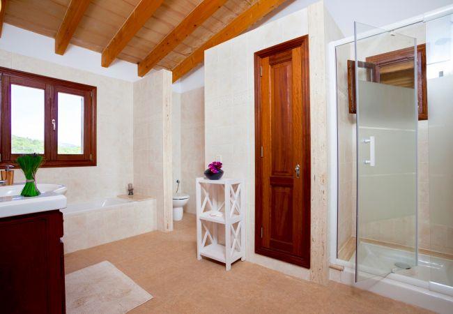Holiday house Villa Mestre (2232214), Sa Pobla, Majorca, Balearic Islands, Spain, picture 11