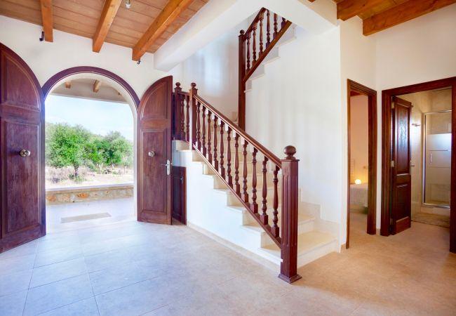 Holiday house Villa Mestre (2232214), Sa Pobla, Majorca, Balearic Islands, Spain, picture 13