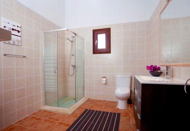 Holiday house Villa Mestre (2232214), Sa Pobla, Majorca, Balearic Islands, Spain, picture 17