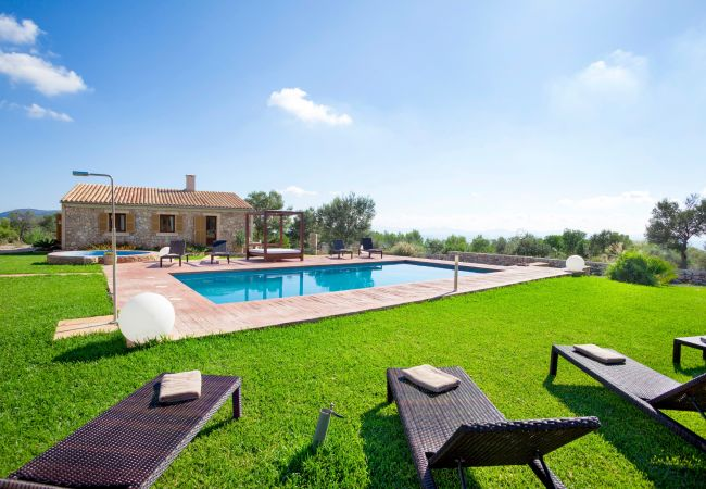 Holiday house Villa Mestre (2232214), Sa Pobla, Majorca, Balearic Islands, Spain, picture 19