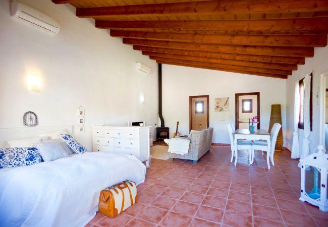 Holiday house Villa Mestre (2232214), Sa Pobla, Majorca, Balearic Islands, Spain, picture 22