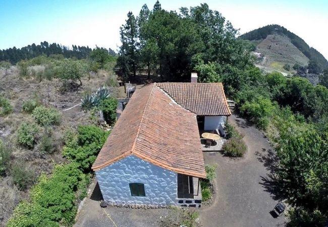 Ferienhaus GC49 RURAL HOUSE IN NATURAL PARK (2195237), Moya, Gran Canaria, Kanarische Inseln, Spanien, Bild 32