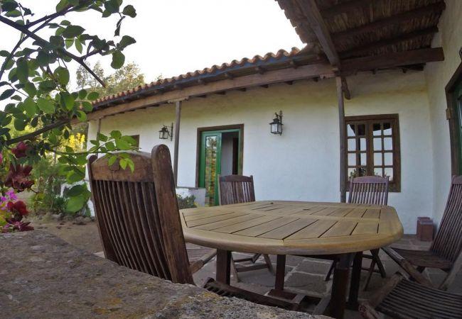 Ferienhaus GC49 RURAL HOUSE IN NATURAL PARK (2195237), Moya, Gran Canaria, Kanarische Inseln, Spanien, Bild 31