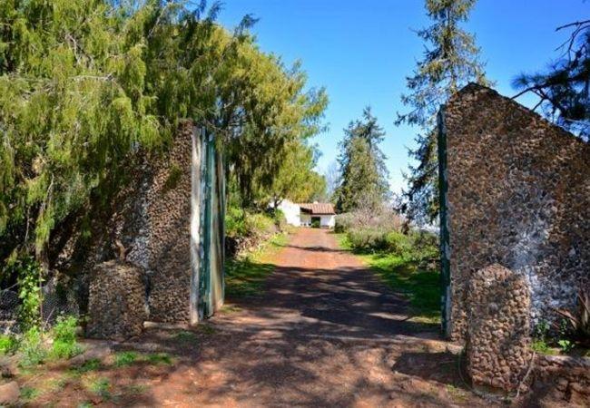 Ferienhaus GC49 RURAL HOUSE IN NATURAL PARK (2195237), Moya, Gran Canaria, Kanarische Inseln, Spanien, Bild 38