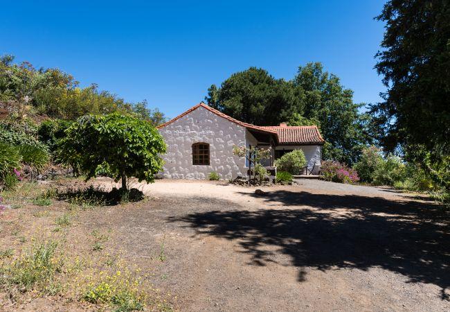 Ferienhaus GC49 RURAL HOUSE IN NATURAL PARK (2195237), Moya, Gran Canaria, Kanarische Inseln, Spanien, Bild 3