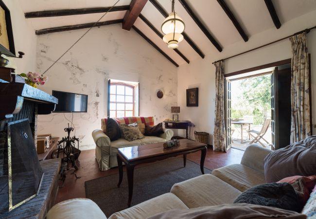Ferienhaus GC49 RURAL HOUSE IN NATURAL PARK (2195237), Moya, Gran Canaria, Kanarische Inseln, Spanien, Bild 5