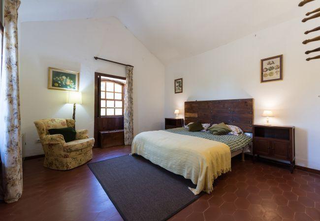 Ferienhaus GC49 RURAL HOUSE IN NATURAL PARK (2195237), Moya, Gran Canaria, Kanarische Inseln, Spanien, Bild 17