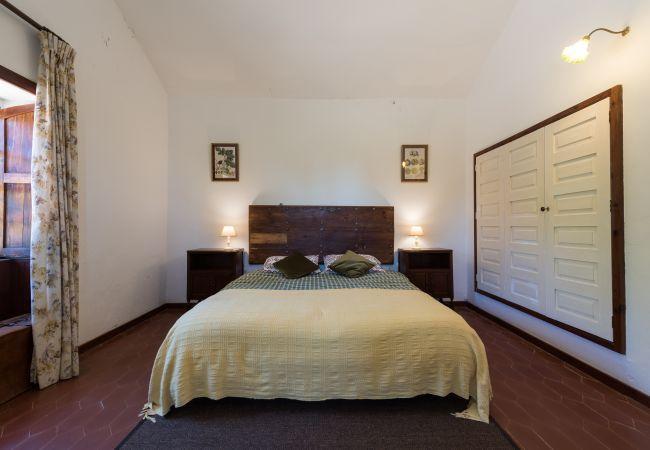 Ferienhaus GC49 RURAL HOUSE IN NATURAL PARK (2195237), Moya, Gran Canaria, Kanarische Inseln, Spanien, Bild 18