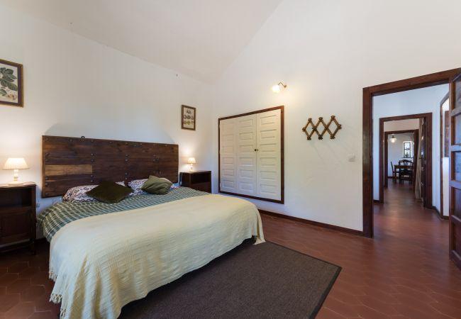 Ferienhaus GC49 RURAL HOUSE IN NATURAL PARK (2195237), Moya, Gran Canaria, Kanarische Inseln, Spanien, Bild 19