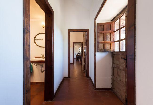 Ferienhaus GC49 RURAL HOUSE IN NATURAL PARK (2195237), Moya, Gran Canaria, Kanarische Inseln, Spanien, Bild 25