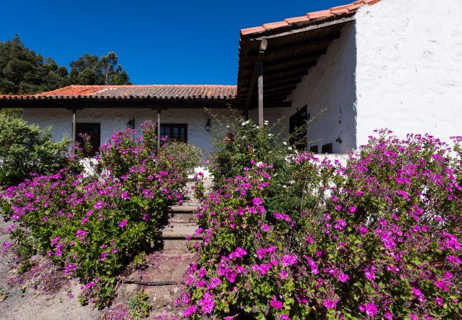 Ferienhaus GC49 RURAL HOUSE IN NATURAL PARK (2195237), Moya, Gran Canaria, Kanarische Inseln, Spanien, Bild 26