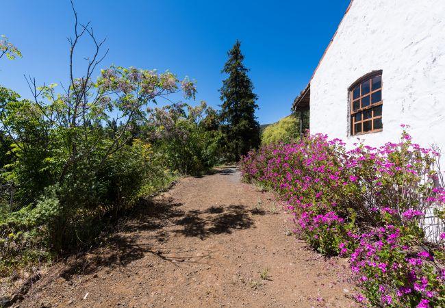 Ferienhaus GC49 RURAL HOUSE IN NATURAL PARK (2195237), Moya, Gran Canaria, Kanarische Inseln, Spanien, Bild 27