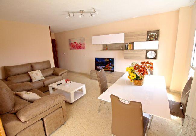 Appartement de vacances APARTAMENTO LAS TORRES (2411660), El Campello, Costa Blanca, Valence, Espagne, image 7