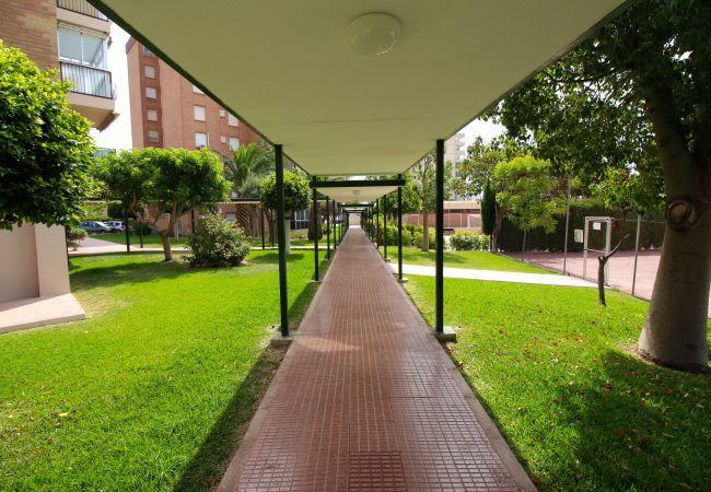 Appartement de vacances APARTAMENTO LAS TORRES (2411660), El Campello, Costa Blanca, Valence, Espagne, image 12