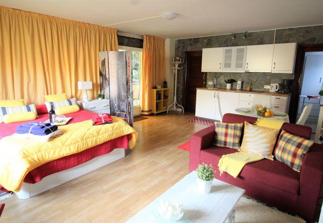 Maison de vacances Bungalow Yeray (2217537), Tacoronte, Ténérife, Iles Canaries, Espagne, image 17