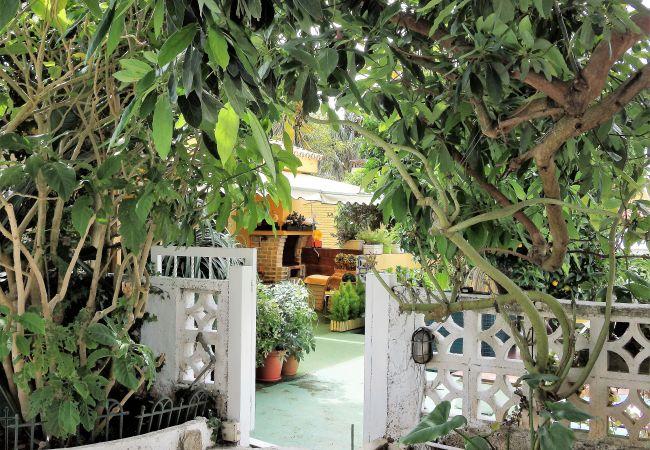 Maison de vacances Bungalow Yeray (2217537), Tacoronte, Ténérife, Iles Canaries, Espagne, image 25