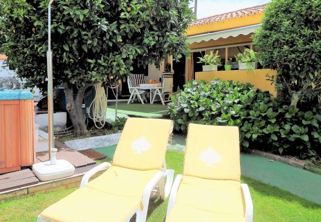 Maison de vacances Bungalow Yeray (2217537), Tacoronte, Ténérife, Iles Canaries, Espagne, image 27