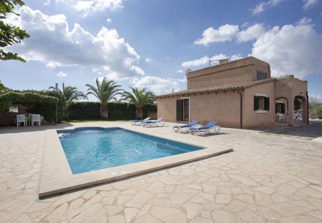 Ferienhaus Villa in Santanyi, Mallorca 103231 (1938079), Santanyi, Mallorca, Balearische Inseln, Spanien, Bild 7
