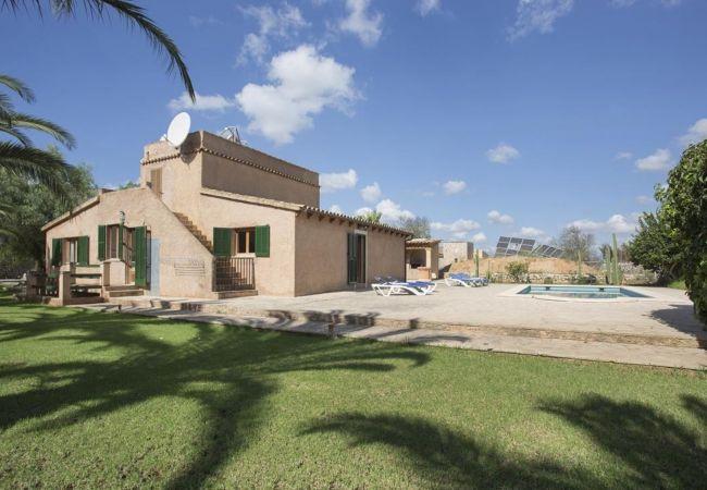 Ferienhaus Villa in Santanyi, Mallorca 103231 (1938079), Santanyi, Mallorca, Balearische Inseln, Spanien, Bild 8