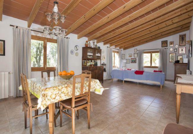 Ferienhaus Villa in Santanyi, Mallorca 103231 (1938079), Santanyi, Mallorca, Balearische Inseln, Spanien, Bild 12