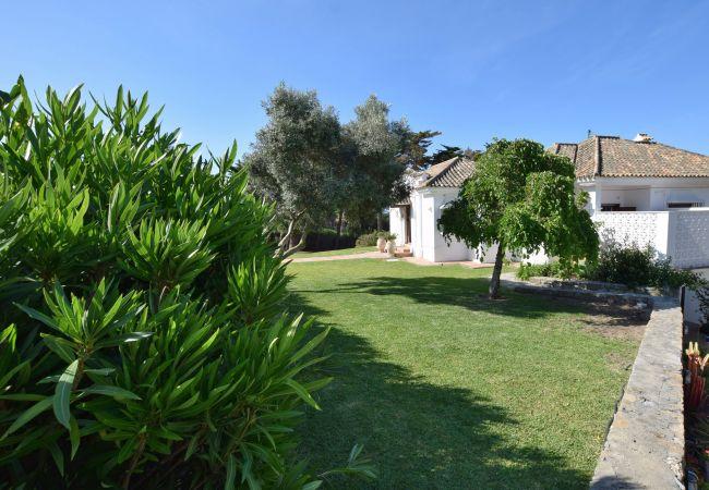 Al Amireh - Jardín delantero