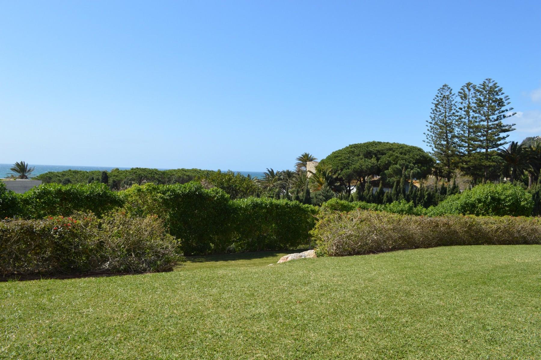 Atlántico IV - Jardín