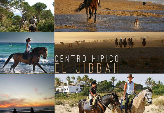 Aires de Zahara - Hipica