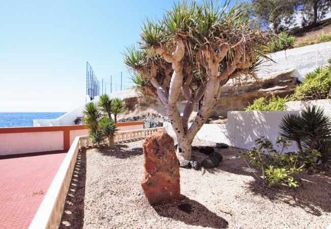 Appartement de vacances Modern Ocean Front Property with Pool, BBQ & WIFI (2302208), Candelaria (ES), Ténérife, Iles Canaries, Espagne, image 52