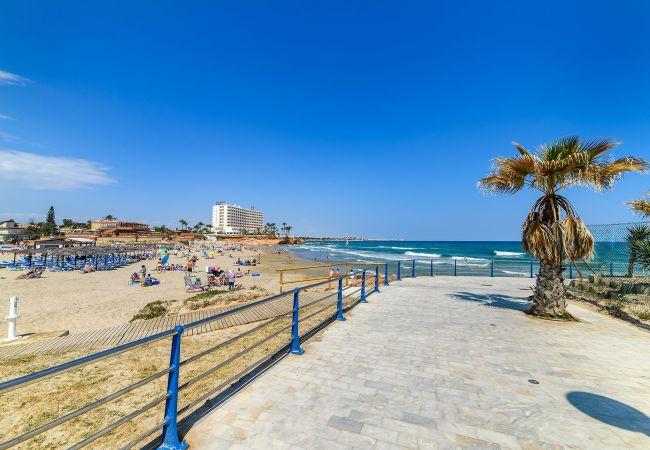 Ferienwohnung Horizonte (2232187), Torrevieja, Costa Blanca, Valencia, Spanien, Bild 54