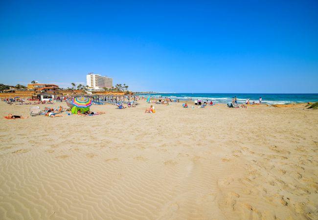 Ferienwohnung Horizonte (2232187), Torrevieja, Costa Blanca, Valencia, Spanien, Bild 45