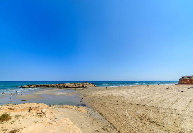 Ferienwohnung Horizonte (2232187), Torrevieja, Costa Blanca, Valencia, Spanien, Bild 49