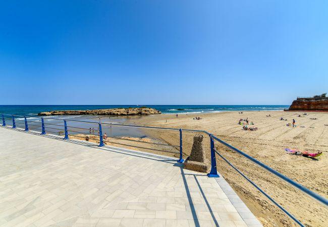 Ferienwohnung Horizonte (2232187), Torrevieja, Costa Blanca, Valencia, Spanien, Bild 50