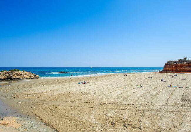 Ferienwohnung Horizonte (2232187), Torrevieja, Costa Blanca, Valencia, Spanien, Bild 51