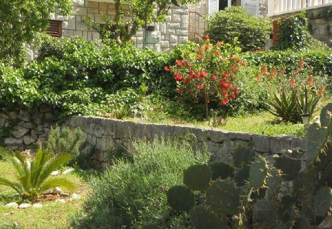 Holiday apartment 3555-1 für 3+1 Pers. in Korcula (2317727), Korčula, Island of Korcula, Dalmatia, Croatia, picture 7