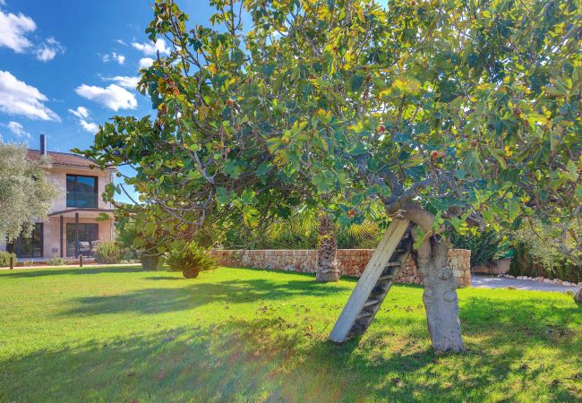 Maison de vacances VILLA CARLAIXA (2302257), Alaro, Majorque, Iles Baléares, Espagne, image 28