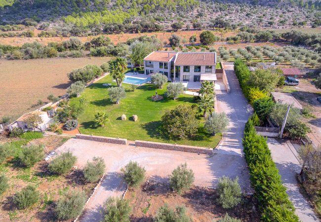 Maison de vacances VILLA CARLAIXA (2302257), Alaro, Majorque, Iles Baléares, Espagne, image 34
