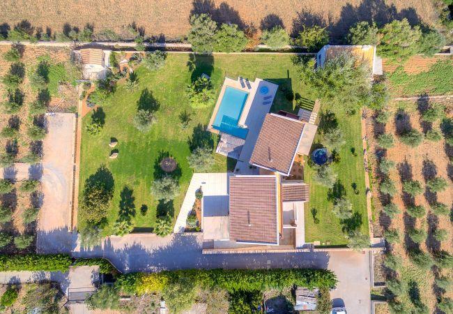 Maison de vacances VILLA CARLAIXA (2302257), Alaro, Majorque, Iles Baléares, Espagne, image 37