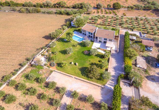 Maison de vacances VILLA CARLAIXA (2302257), Alaro, Majorque, Iles Baléares, Espagne, image 38