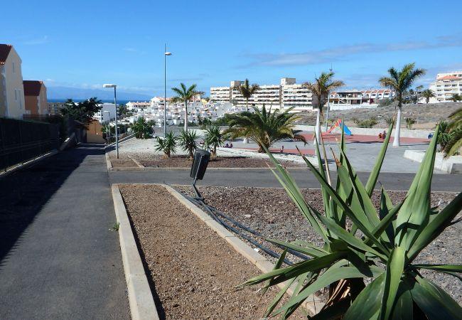 Appartement de vacances Casa El Refugio (2304649), Callao Salvaje, Ténérife, Iles Canaries, Espagne, image 23