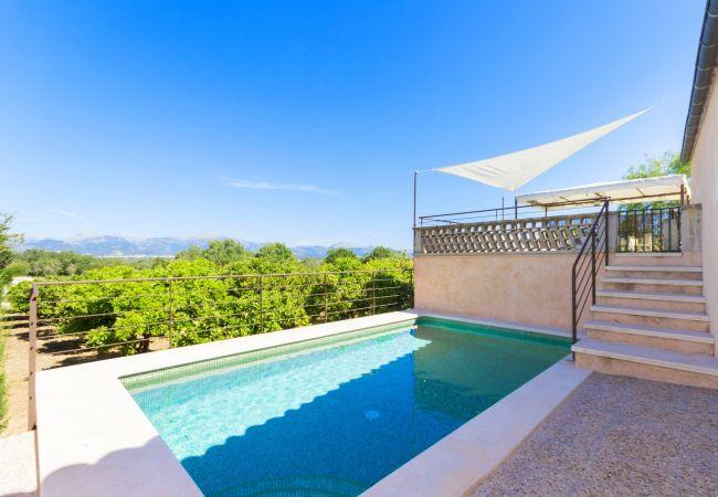 Can Tiro villa Costitx Mallorca 096