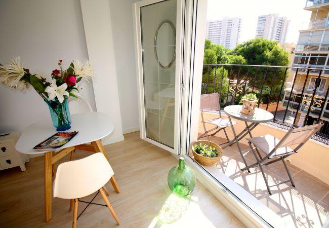 Appartement de vacances APARTAMENTO SOL Y LUZ 3 (2411664), El Campello, Costa Blanca, Valence, Espagne, image 17