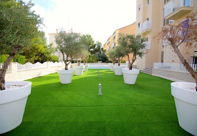 Appartement de vacances APARTAMENTO SOL Y LUZ 3 (2411664), El Campello, Costa Blanca, Valence, Espagne, image 12