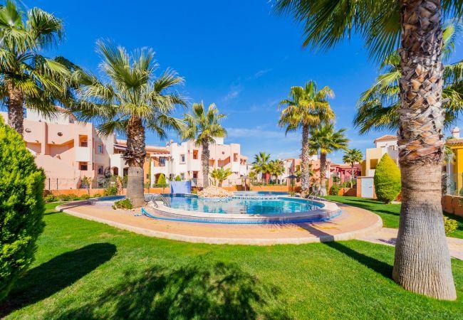Ferienwohnung ID29 (2351039), Torrevieja, Costa Blanca, Valencia, Spanien, Bild 12