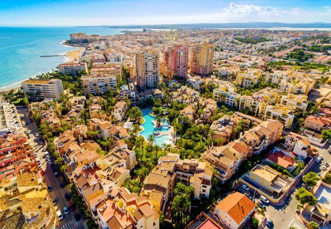 Ferienwohnung ID145 (2351043), Torrevieja, Costa Blanca, Valencia, Spanien, Bild 24